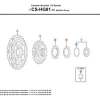 Shimano Koronka kasety SLX CS HG81 do kaset 11-34/11-36